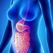 Patency (teszt) kapszula női testben ábrázolva